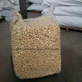 La nouvelle récolte chinois blanchies noyau d'arachide