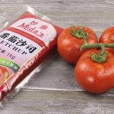 1kg de especias en sacos de puré de tomate salsa ketchup