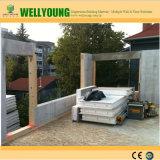 Non métalliques à isolation thermique panneau mural pour maison modulaire