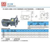 Übersetzter Motor des vertikales Reduzierstück-3-phasiger Bs-Flansch-(Bremse) mit Aluminiumplatte