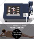 Новейший профессиональный Eswt Shockwave машины для тела боль