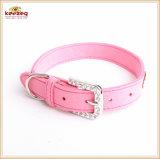 신식 파 다이아몬드 애완 동물 공급 또는 개 고양이 고리 Kc0168