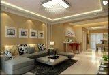 工場高品質の屋内穂軸の長い寿命6W Downlights LED