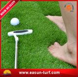Forma de interior China del verde que pone de la hierba de Counrt del golf del tenis