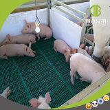 El equipo de ganado porcino galvanizado en caliente la caja de destete