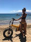 20 Zoll-Stadt faltbares elektrisches Fahrrad/Ebike mit Lithium-Batterie