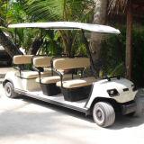 Operado a bateria 8 lugares de carrinhos de golfe para venda