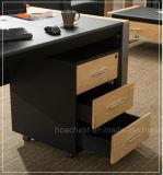 Nouveau bureau en bois en cuir moderne en bois (V30)