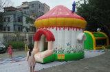 4*4*4m немногая раздувная дом прыжока, замок малого рождества оживлённый, кровать праздника раздувная скача для малышей в доме и ярд