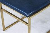 En acier inoxydable chaise de salle à manger d'or Champagne