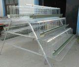 Poulailler clapier Chambre PET pour les petits animaux de la cage