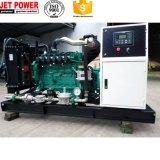 generador eléctrico del gas de la potencia 20kw con el alternador sin cepillo