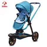 Carro de bebê rodado da paisagem três elevados