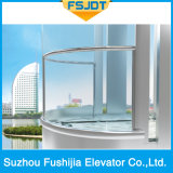 Glas die de Panoramische Lift van de Villa van de Passagier van de Observatie met Apparaat Vvvf bezienswaardigheden bezoeken