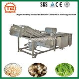 Bulle haute efficacité de champignons de fruits de l'ozone Machine à laver