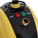 Gran capacidad profesional de los vapores de fuerte comercial de vapor ropa de hogar el vaporizador