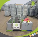 Embalajes de parto de parto galvanizados de la alta calidad de los embalajes de los cerdos para la puerca
