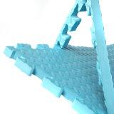 Couvre-tapis de lutte de mousse de couvre-tapis d'étage de formation d'EVA de qualité