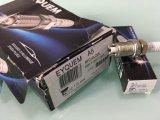 Bougies d'allumage d'A5 Rfc42lz2e 0911007285eyquem pour des pièces d'auto de Bosch