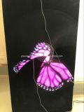 ventilatore olografico 3D per l'esposizione del prodotto