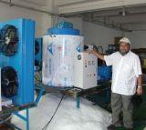 Materielle Flocken-Eis-Maschine des Meerwasser-SUS316 mit Bitzer Kompressor