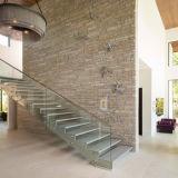 Escalera recta llena del acero inoxidable con el pasamano de cristal de Framless