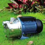 Bomba de água de venda quente do aço inoxidável para a série de Js do jardim
