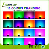 Il RGB colora l'indicatore luminoso di inondazione impermeabile cambiante del LED