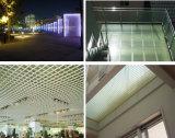 Gratings moldados FRP/GRP de grande resistência de /Transparent dos Gratings/telhado