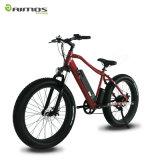 bici elettrica della gomma grassa del motore 26 * 4.0 pollici 250 - 1000W