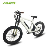 AMS-Tde-Sr Motor de 1000W Batería oculto neumático Fat Bicicleta eléctrica
