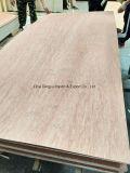 El contrachapado marino de alta calidad de madera contrachapada ordinaria /