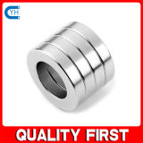 De grote Ring van Magneten NdFeB N42