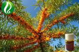 Ácido Seabuckthorn Palmitoleic alta de aceite de frutas