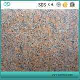 De granito rojo chino G562 rojo Fengye Arce para la venta de granito rojo
