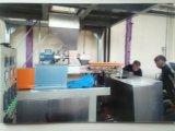 Das Puder-Beschichtung-/Lack-Produzieren/Herstellung/Produktion/bildete Zeile
