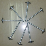 Hot Feux de béton en acier inoxydable clou galvanisé/grands clous ondulé en acier
