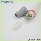 Uds LED 계량인 Hw-5L 본래 광섬유 분리가능한 Handpiece