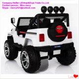 Kind-elektrisches Auto-batteriebetriebenes Spielzeug für Jungen und Mädchen