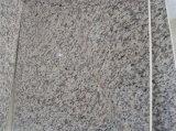 建築材料の赤いトラの皮の花こう岩の平板かタイル