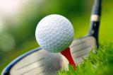 Запас продуктов пользовательских печать с плавающей запятой пластиковая заглушка практике мяч для гольфа