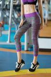 La ginnastica di forma fisica delle signore ansima i vestiti di esercitazione di yoga di allenamento delle donne