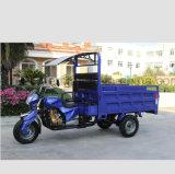250cc Tricycle de cargaison avec le soleil la preuve