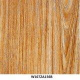 De houten Film W032jb020b van het Document van de Overdracht van het Water Holigraphics