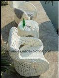 Openlucht /Rattan/de &Table Reeks van de Stoel van de Rotan van het Meubilair van de Tuin/van het Terras/van het Hotel (HS 1216C & HS 1216ET)