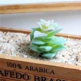 Яркие Искусственные растения Succulents пластмассовые цветы