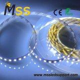 Indicatore luminoso di striscia impermeabile di 5050 LED