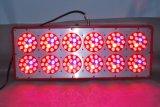 Populaire leiden kweken Lichte 360W voor het Tuinieren Apollo 12 van de BinnenInstallatie Lichten