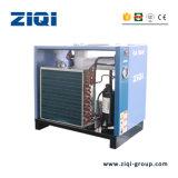 El tornillo de la máquina de secado de aire comprimido