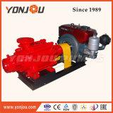 이동할 수 있는 디젤 엔진 펌프